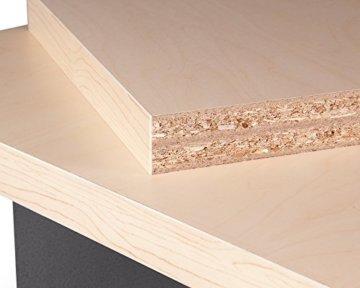 Ondis24 Werkbank 160 cm mit 6 Schiebern und Tür abschließbar Werktisch für Werkstatt Holz Arbeitsplatte (85 cm Arbeitshöhe) - 4